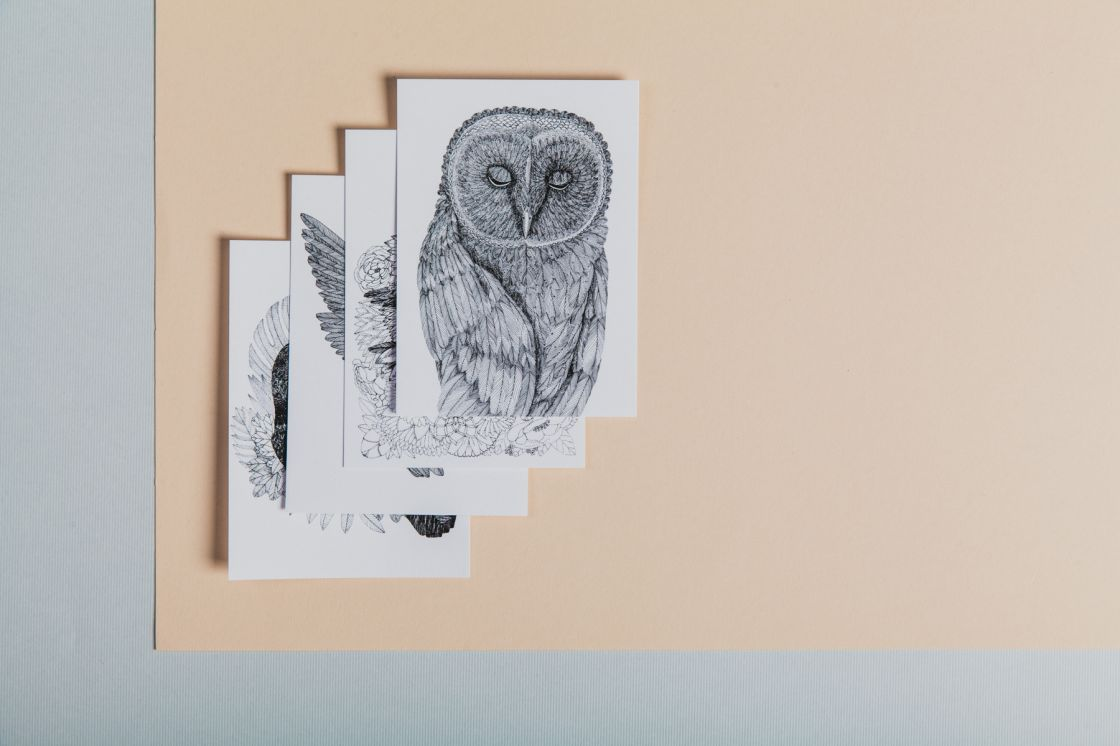 Ptačí pohlednice